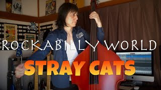 ROCKABILLY WORLD / STRAY CATS (LEE ROCKER)【DOUBLE BASS COVER】