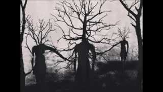 Kirlian Camera - Unknown