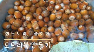 [묵만들기]  생도토리로 묵 만드는 방법. 도토리묵 만…
