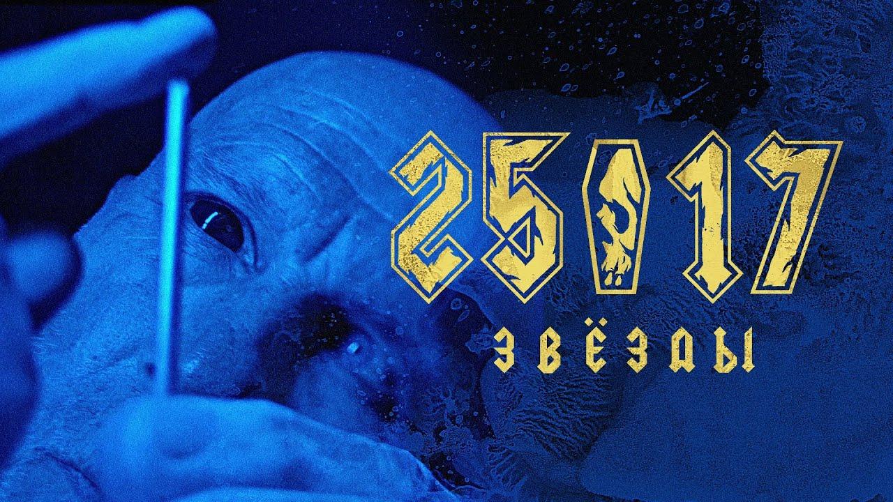 """25/17 """"Звёзды"""""""