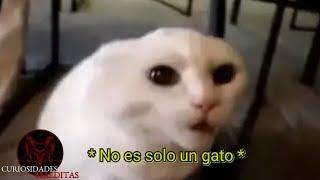 5 Vídeos De Terror Reales Vol.133 2018 FANTASMAS REALES VIDEOS DE MIEDO REAL GHOST CAPTURED ON TAPE