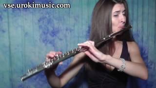 Как играть на Флейте Passenger - Let Her Go Cover самоучитель уроки обучение ноты школа курсы
