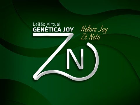 Lote 33   Benito FIV JOY   JOY 14 Copy