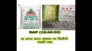 DAP काय आहे? DAP चा वापर करावा की नाही?DAP चा वापर केल्यास काय करावे?