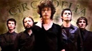 Circodelia-Sexo Drogas y Rock N
