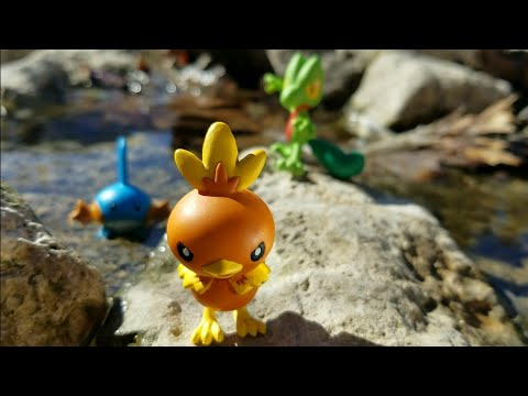 Pokémon Figure Review: Generation 3 box set, Treecko, Torchic, and Mudkip