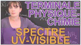 Spectre UV-visible - Physique-Chimie - Terminale - Les Bons Profs