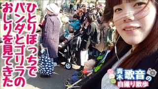独りぼっちだけど上野動物園のパンダとゴリラを見に行きました。 ※カメ...