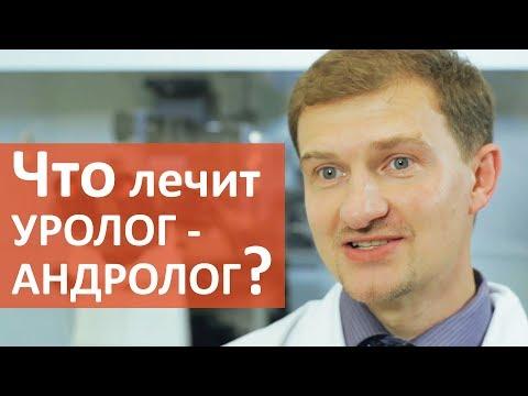Что лечит врач-уролог - DocDoc