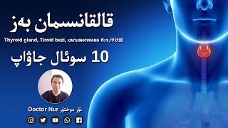 قالقانسىمان بەز ھەققىدە بىلىملەر 10 سوئال جاۋاپ   Thyroid Gland, Tiroid Bezi, 甲状腺, қалқансиман бәз