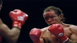 Daniel Zaragoza - Highlights & Knockouts