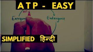 What is ATP ? (adenosine triphosphate & atp cycle ,  Hindi)