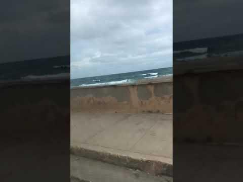 Video de Gibara