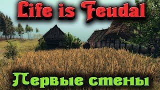 Life is Feudal - Первые стены замка