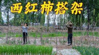 【农家的小勇】农村小夫妻建菜园,他们能坚持下去么?男耕女织的日子真向往!