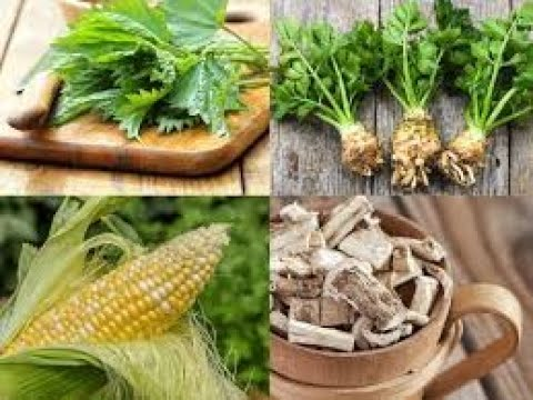 Best herbs for natural kidney cleansing
