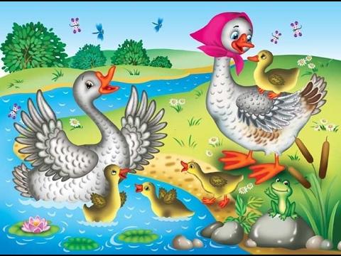 Гусыня с гусятами картинки для детей, надписями делах