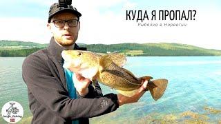 КУДА Я ПРОПАЛ рыбалка в Норвегии Ловля трески в Норвегии с берега Норвегия Рыбалка