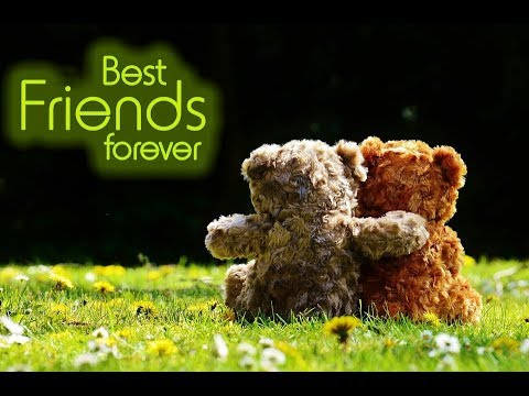 Best Friend Birthday Wishes WhatsApp Video