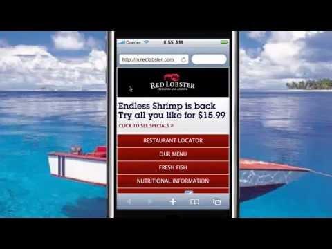 Eau Claire Website Design: Importance Of Mobile Websites