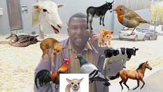 12 Animal Sound Man  | Imitates 12 Animals | This man is incredible