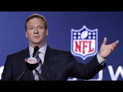 Roger Goodell tells NFL owners 'everyone should stand for the national anthem'