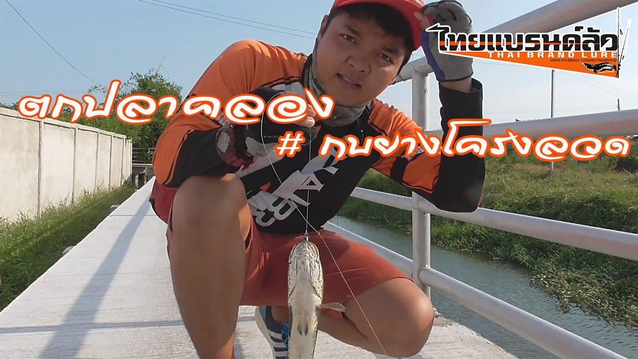 ปลาช่อนคลอง # THAI BRAND LURE  Street fishing snakehead fishing