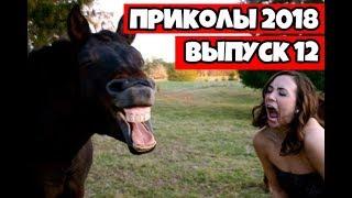 Подборка приколов 2018 Июнь #12 Самые смешные приколы - ПРИКОЛЮХИ