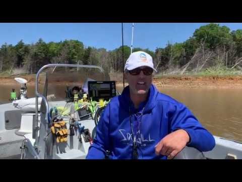 Lake Texoma Fishing Guides-How To Striper Fish With Paddle Tail Swimbaits