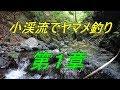 小渓流でヤマメ釣り‼ 渓流の妖精☆彡 第1章 の動画、YouTube動画。