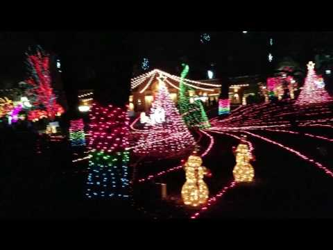 Lincoln park zoo lights 2016