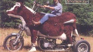 Приколы на мотоциклах. Fun on motorcycles.