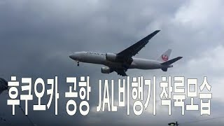 JAL airliner landing at Fukuoka airport 후쿠오카 공항 JAL 여객기착륙하는모습