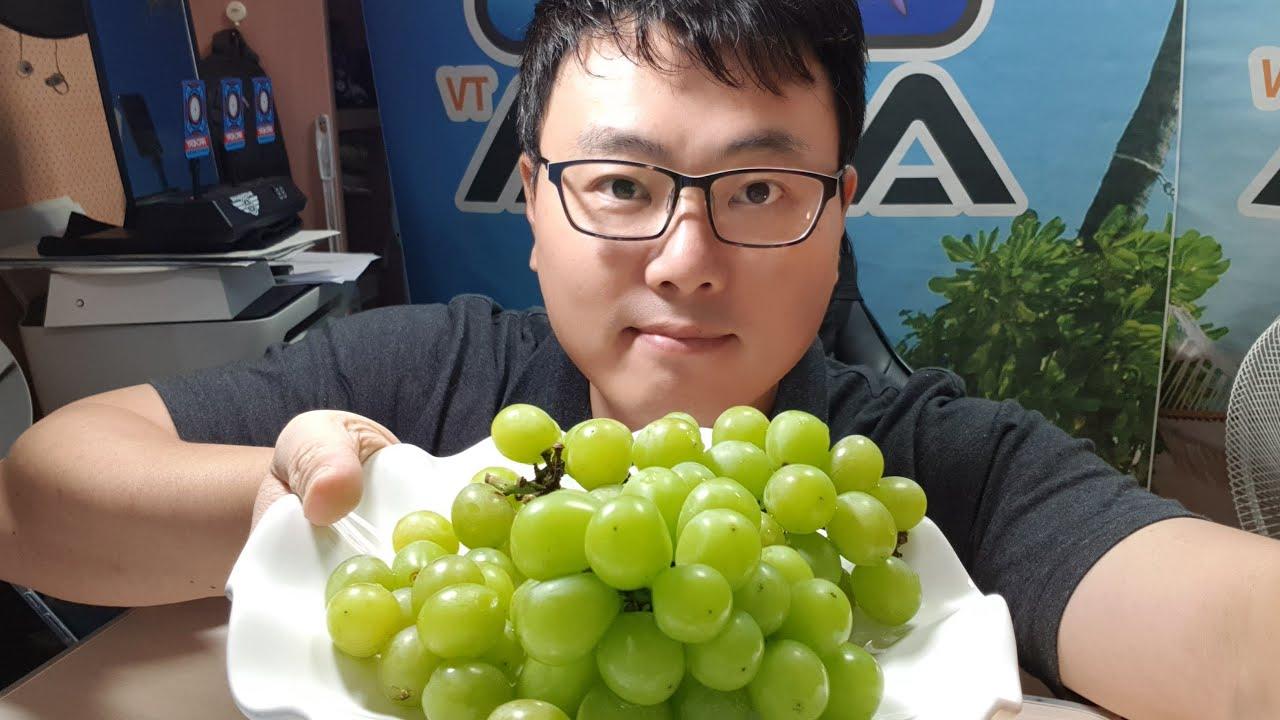 아라tv첫 실시간 소통방송 (디저트 샤인머스켓)