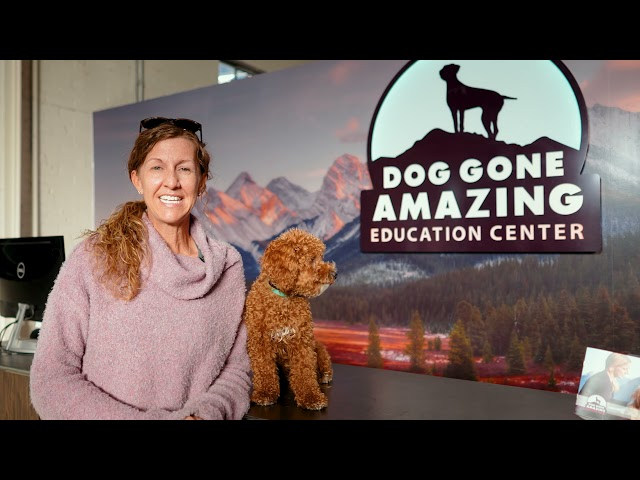 Dog Gone Amazing - Dog Training Testimonial