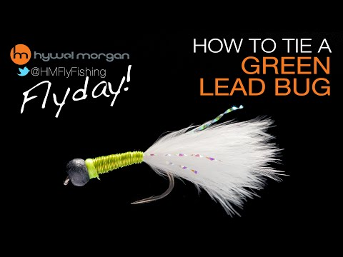 Green Lead Bug Fly Pattern - FlyDay 10