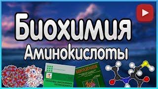 Биохимия. Лекция 1. Аминокислоты