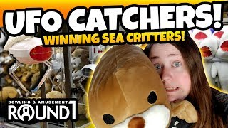 Video WE WIN Sea Critters at the Round 1 Arcade! Winning Round 1 UFO Catchers Claw Machine! TeamCC download MP3, 3GP, MP4, WEBM, AVI, FLV Agustus 2018