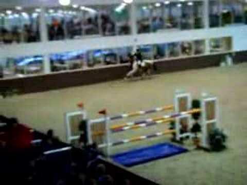 Addington Equestrian Centre Opening Robert Whitaker