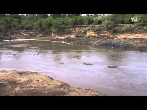 Collecting Mara River Data with a Robotic Boat
