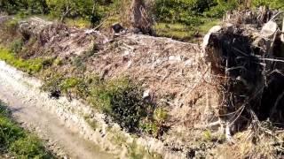 Video vertidos peligrosos colector AVE Camino Tiñosa/acequia