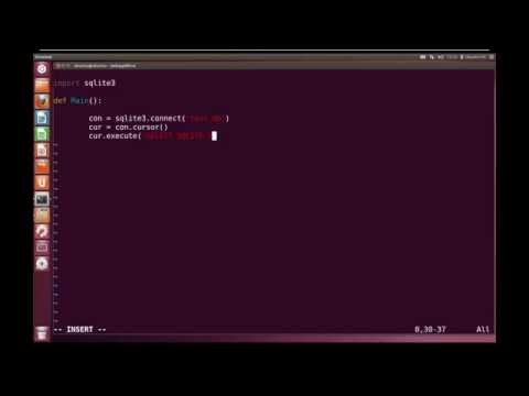 Python Advanced Tutorial 8 - Database Interaction