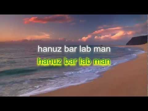 afghan karaoke, hanuz bar lab man, ahmad zaher
