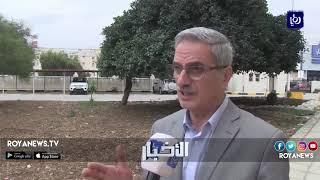 مشروع أنبوب الغاز يدمر أشجارًا حرجية بإربد أكبر من عمر الاحتلال - (7-11-2018)