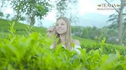 Tealia - Premium Artisan Teas