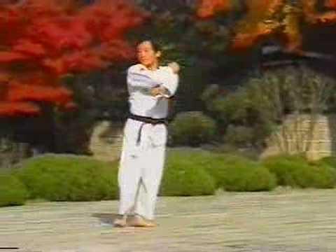 WTF Taekwondo - Taegeuk Ee Jang (2nd Poomse)