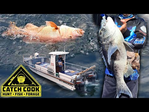 Fishing Musselcracker and Steenbras on a charter, Mossel bay, South Africa [CATCH COOK]