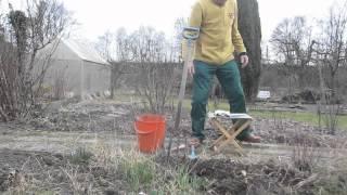 A2-B2 Hörverstehen Gartenarbeit Unkraut Jäten