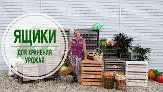 Ящики для хранения урожая 🌟 Лучшее решение от интернет магазина hitsad.ru