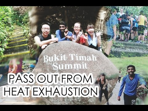 Witnessing A Passed Out From Heat Exhaustion AtBukit Timah Nature Reserve | EVALEE LIN